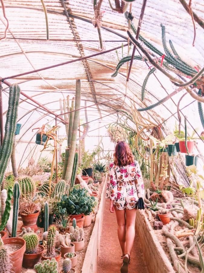 Los Angeles Palm spring 4e